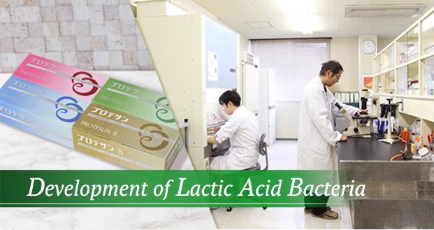 乳酸菌研究開発製造